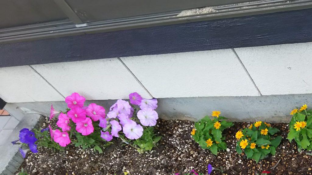 おひさま花壇