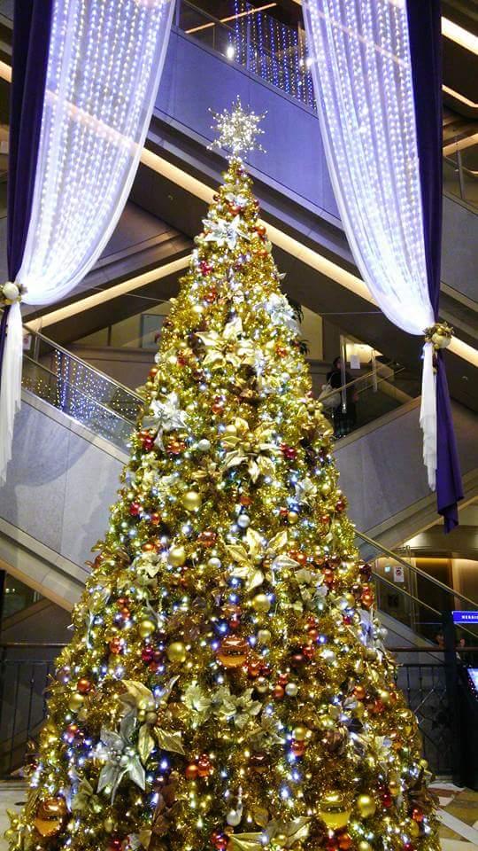 クリスマスイルミネーションb
